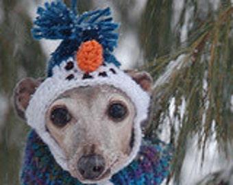 Dog hat - SNOW MAN - Humorous - Choose color - 2 to 20 lb pets - need measurement