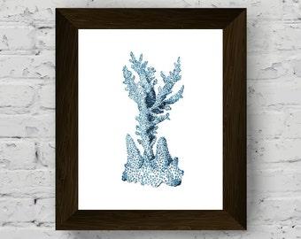 coral wall decor, coastal prints, nautical watercolor, marine decor, bathroom wall art, sea print, wall art prints, digital download