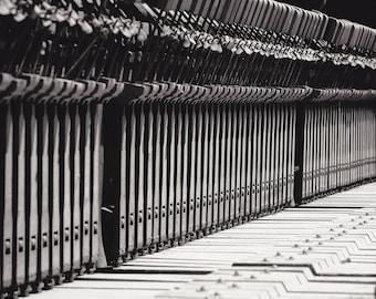 "Fine Art Photography, Musical Instrument, Portland Oregon, ""Discarded Keys #2"""
