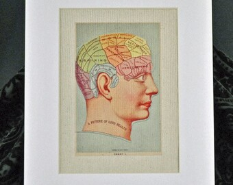 """Phrenology - """"A Picture of Good Health"""", antique reproduction print, curiosity, macabre, oddity, medical, Victorian, unique gift"""