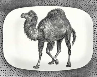 Camel serving platter, Camel No. 1