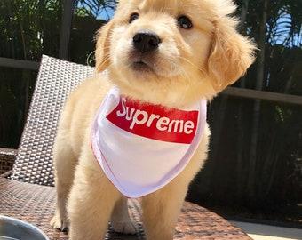 Sup' reversible dog bandanas/ designer inspired bandanas/ different color bandanas /Lv bandanas /