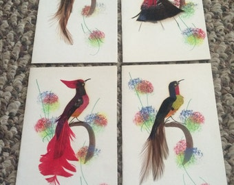 Greeting note cards - Mexican feather and print art  - set of 4 - #5