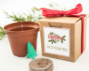 """12 Mini Christmas Tree Garden Gift Set Holiday Party Favors, Unique Christmas Gift Idea, Personalized """"Merry Christmas To You"""" Gift Box"""