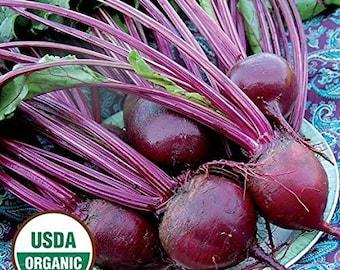 David's Garden Seeds - Detroit Dark Red Beet Seeds - Beet Seeds - Non GMO Beet Seeds