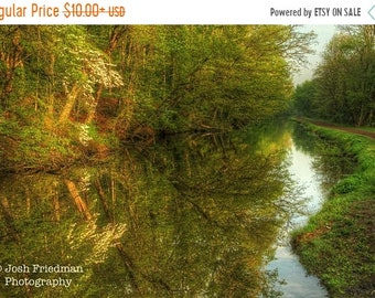 SALE 20% Off Delaware Canal and Towpath in Spring, Landscape Photograph, Dogwood Tree, Morning Light, Zen, Bucks County, Pennsylvania, Natur