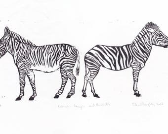 Zebras Linocut, Black and White Lino Block Print of Two Zebras, Grevy's zebra and Burchell's Zebra
