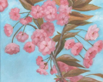 Cherry Blossom, Sakura, Spring, Flowers, Pink, Art Print, A4