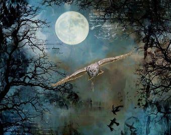 Fantasy art print,owl photograph,night forest landscape,photo art compilation,full moon photograph,fantasy compilation,gift art