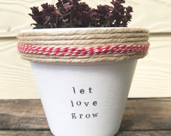 Let love grow! | Funny pot plant gift | with a pun | wedding | engagement | romantic | present 11cm pot | Valentine's Day