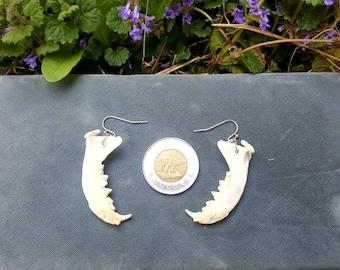 Mink Jawbone Earrings