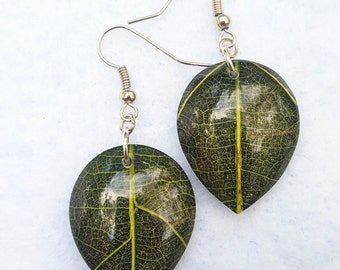 Beautiful Green Leaf Earrings