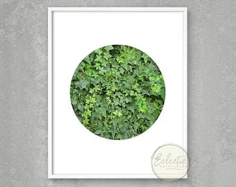 Greenery Printable Art, Foliage Print, Circle Photo Print, Printable Photography, Nature Photography, Green Wall Art, Ivy Photography Print