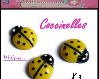 Set of 3 yellow resin Ladybug embellishment scrapbooking card *.