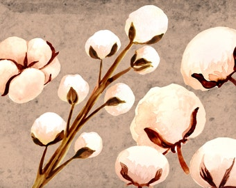 Floral clipart, watercolor flowers, cotton clipart, watercolor floral clipart, spring clipart, wedding clipart, wedding invites