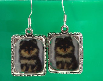 Pomeranian Dog Black tan Puppy Picture 3d Dimensional Earrings Silver