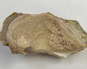 PHOSPHATE MINERALS Rare Fairfield Utah Nodule 68g Lot MIN35