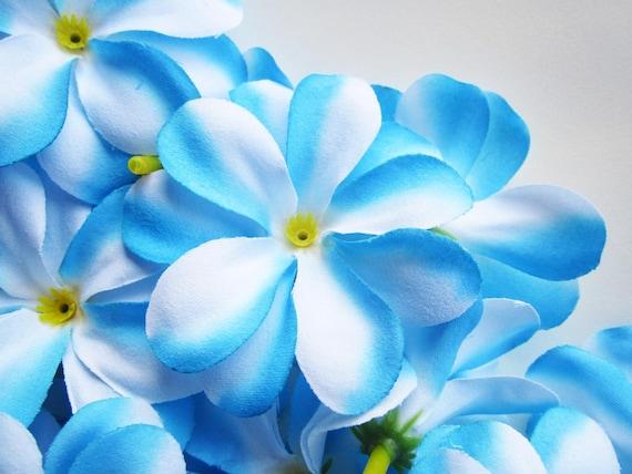 12 blue plumeria frangipani heads artificial silk flower 3 mightylinksfo