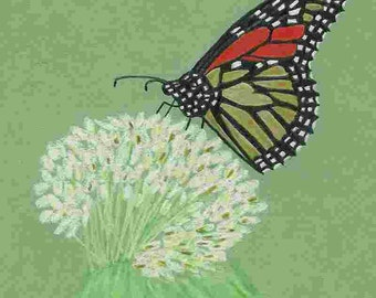 Monarch Butterfly Pattern for colored pencil