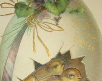 Sweet Vintage/Antique Easter Postcard (Chicks In Egg)