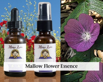 Mallow Flower Essence, 1 oz Dropper or Spray for Warm, Open-Hearted Sharing, Safety and Trust for Those who Feel Shy or Socially Insecure