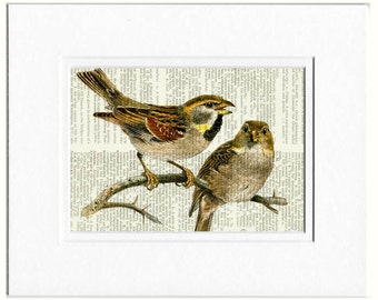 birds, two sweet birds print