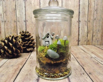 Small Jar Terrarium - Live Moss - Fairy House - Glow in the Dark mushrooms - Miniature lantern - Fairy Garden - TERRARIUM