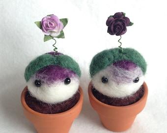 Little Bulbling Kawaii Plant Gift