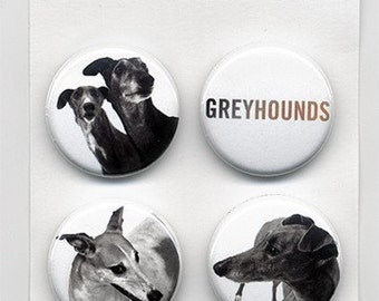 greyhound photographs 4 piece 1 inch pinback button set