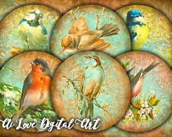 Bird printable image, digital collage sheet, vintage ephemera, instant download circle 2.5 inch, round magnets making, paper goods supply