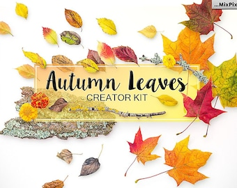 Autumn Leaves Creator Kit, Falling Leaves , Fall leaves, Autumn Leaf, realistic, natural look