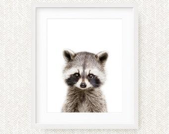 Nursery Decor Raccoon Print, Woodland Nursery Animal, Raccoon Digital Print, Nursery Art, Instant Download Printable Art, Woodland Art