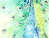 Peacock Painting - Print ...