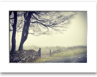 Misty Morning, In Dorset, Limited Edition Print, With Mount, Two sizes Available. Landscape, Misty, Trees