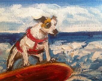 Surfing Dog Print