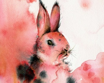 Honeysuckle-  Rabbit Art