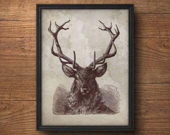 Deer antlers poster, Deer antlers print, Antlers deer print, Deer head print, Deer antler decor, Reindeer antlers, Deer print, Deer wall art