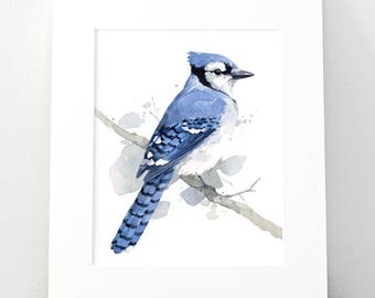 Blue Jay Print, 8x10 bird watercolor painting
