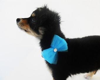 Blue tulle dog bow, girl dog bow, dog collar bow, girl jewel bow, cat collar bow, blue bow