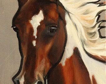 Pinto Horse Original Oil Painting