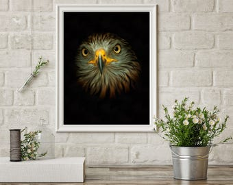 Hawk digital artwork, birds of prey, bird wall art, gold hawk, bird drawing, bird painting, bird art print, bird artwork, bird poster