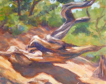 Twisted Sister, 6x6 Original Oil Painting on Canvas Panel, Sedona Arizona, FREE SHIPPING