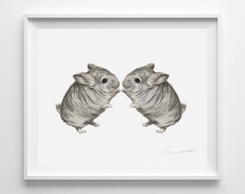 Chinchilla painting watercolor twins sweet home decor zoom jeuxipadfo Gallery
