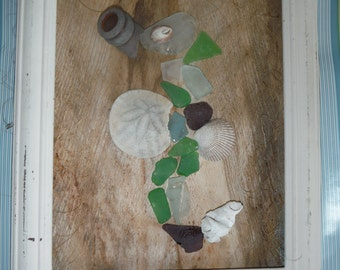 Sea Glass and Sea Shells Seahorse Framed Art