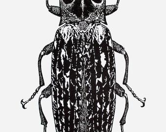 Alaus Oculatus - Click Eye Beetle Linocut Print