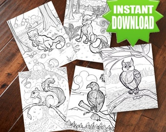 Wildlife Coloring Pages - 5 Adult Coloring Pages Owl Fox Hawk Squirrel Raccoon Printable Digital Download Art Hand Drawn by M. W. Wilson