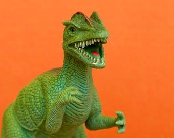 "Photography colorful plastic toy dino dinosaur  photograph orange green kids children wall art ""Doug"""