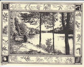 Newcomb Lake with Leaf ID border-This 6-pack of blank, ivory cards w/envelopes drawn by Linda Cook DeVona features an Adirondack lake