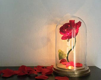 Enchanted Rose Flower Lamp, Beauty And The Beast Enchanted Rose, Rose In  Glass Dome