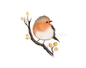English Robin bird painting, bird prints, home decor,  gift under 25, nursery wall decor